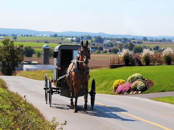 Amish transportation in Pennsylvania Dutch Country