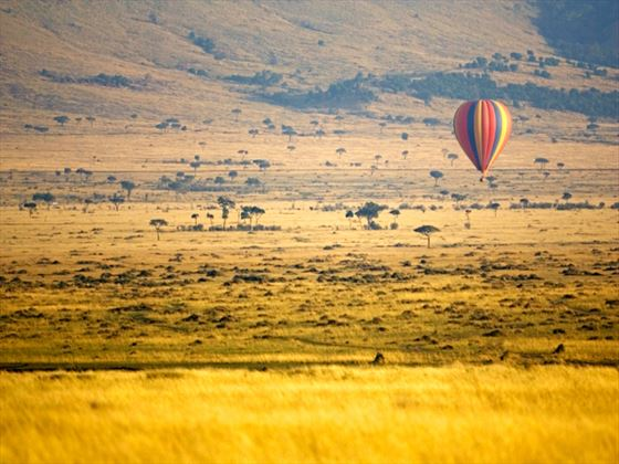 Balloon flight over Masai Mara, Kenya