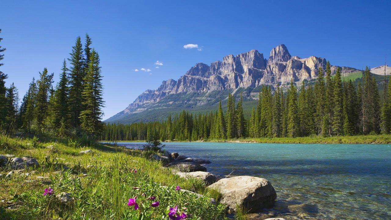 Single Travel Tours Canada