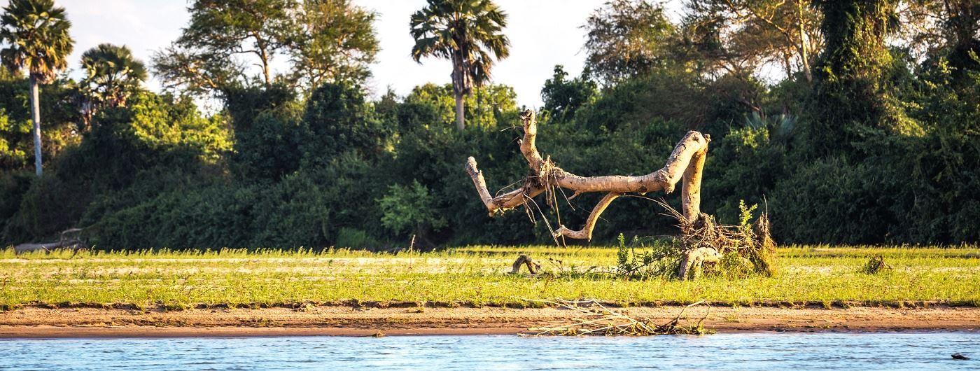 Getty Rufiji River in Selous Game Reserve