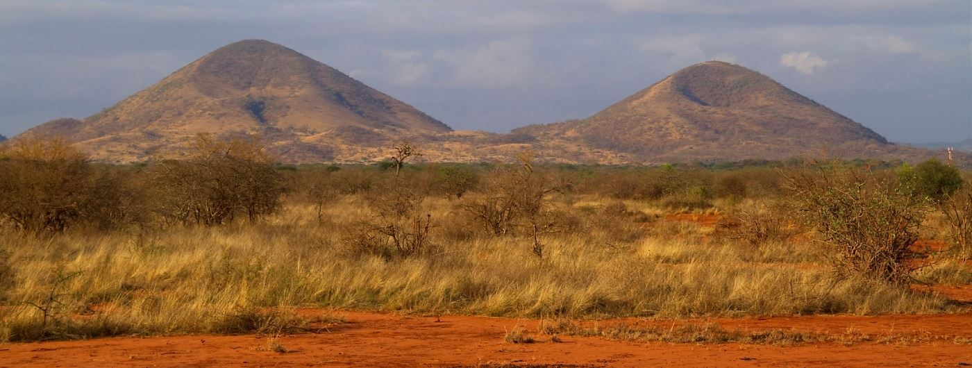 Tsavo West NP - getty