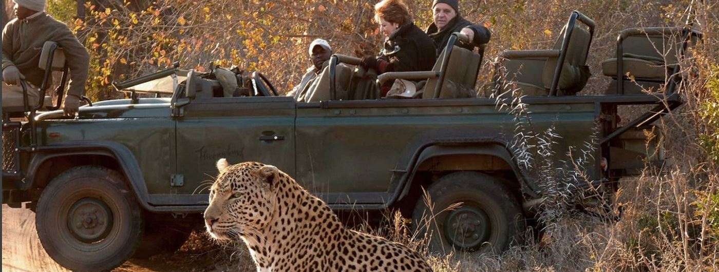 Thornybush Private Game Reserve - Game Lodge game drive