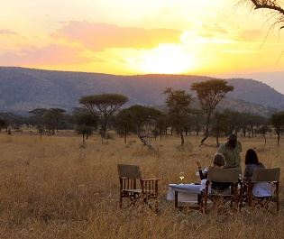 Nimali Central Serengeti