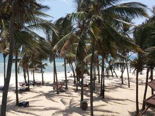- Taste of Kenya & Beach Twin Centre