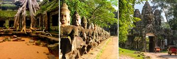 Highlights of Vietnam and Cambodia; Ta Phrom Temple, Giant Statues in Angkor Thom, Ancient Gate Angkor Thom