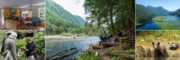 Great Bear Lodge, Biologist Presentation, Autumn Platforms to Watch the Bears, Great Bear Rainforest, Grizzly Bear and Cub and Guided Walks