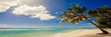 The beach at Sugar Bay