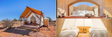 Under Canvas Grand Canyon Stargazer with Adjacent Hive