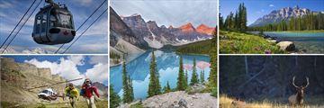 Activities, Scenery & Wildlife in Banff