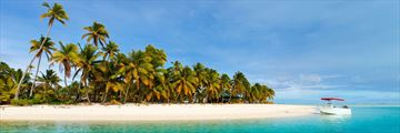 Palm trees on Aitutaki Island