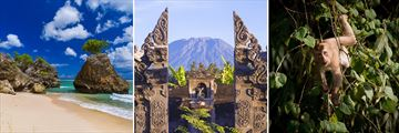 Bali beach, Mount Agung & Macaque Monkey