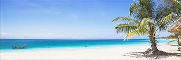 Beach beach in Zanzibar