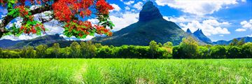 Beautiful views of Mauritius' nature