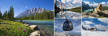 Bow River, Mortine Lake, Sulphur Mountain Gondola & Helicopter Tour in Banff