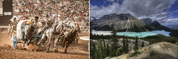 Calgary Stampede & Rocky Mountains