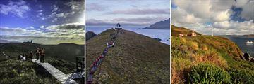 Cape Horn Island Excursion