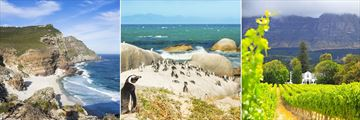 Cape Point headland, Penguins on Boulders Beach & The Winelands