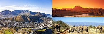 Aerial view over Cape Town, Sunrise over the winelands and Safari elephants