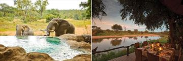 Curious elephants and al fresco dining in Kruger National Park