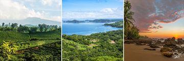 Coffee Plantation & Stunning Guanacaste Scenery, Costa Rica