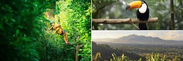 Ziplining, toucans and San Jose Valley