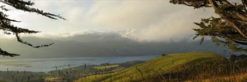 Misty Dunedin hills