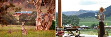 Emirates One&Only Wolgan Valley, Wallabies and The Country Kitchen
