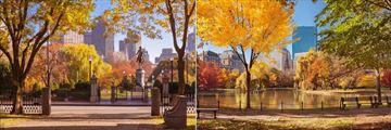 Boston Public Gardens in Autumn at Fairmont Copley Plaza