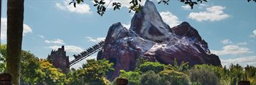 Expedition Everest at Walt Disney World Resort