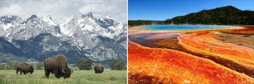 Grand Teton & Yellowstone National Park