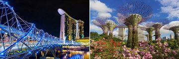Helix Bridge & Gardens by the Bay, Singapore