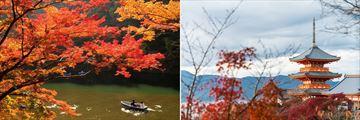 Katsura River & Kiyomizu Dara Pagoda Kyoto