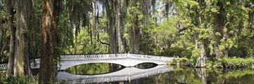 Magnolia plantation, Charleston, South Carolina