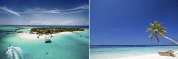 Maldives Island & Pristine Beachscape