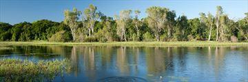 McCreadies Billabong, near Litchfield National Park, Kakadu