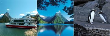 Milford Sound Scenery & Penguins in Fiordland