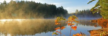 Misty lake at sunrise in Provincial Park, Ontario