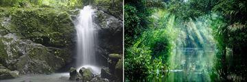 Manual Antonio and Tortuguero National Park