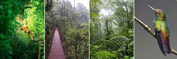 Monteverde activities & scenery
