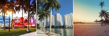 Scenery in Miami, Florida