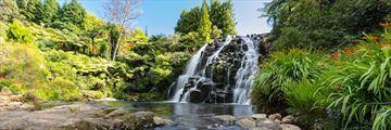 Owharoa Falls, Karangahake Gorge, Coromandel Peninsula