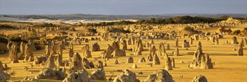 Pinnacles in Nambung National Park