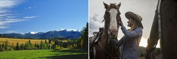 Ranch Landscapes & Experiences, Alberta