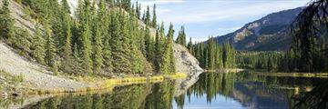 Reflections in the Horseshoe Lake at Denali National Park
