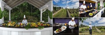 Round Hill Hotel and Villas, Juice Bar, Reaping the Organic Garden, The Grill, Chef in The Organic Garden and The Grill Dishes