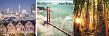 San Francisco, Golden Gate Bridge & Redwood National Park