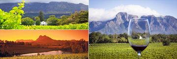 Stellenbosch Vineyards & Winelands