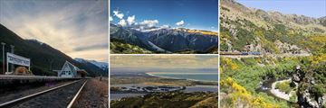Stunning scenery and sights aboard the TranzAlpine Train