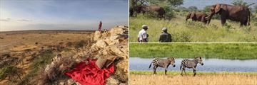 Tarangire landscapes & wildlife