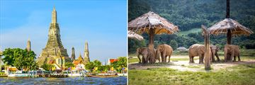 Wat Arun and Elephant Nature Park, Chiang Mai